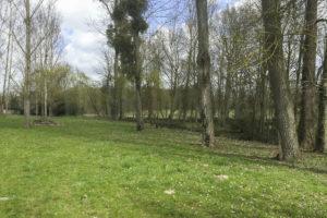Le grand parc de la grande demeure à vendre en Seine-et-Marne