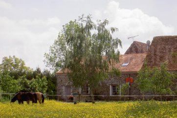 Belle propriété équestre sur 1 hectare, possibilités d'extensions