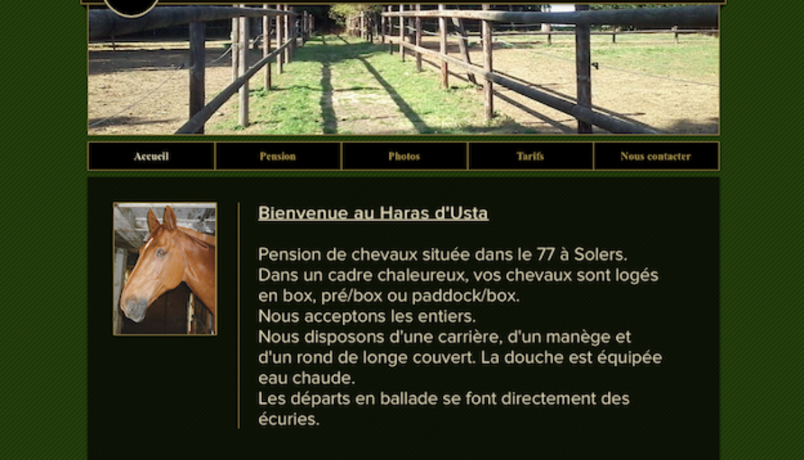 Capture site internet équestre Haras Usta
