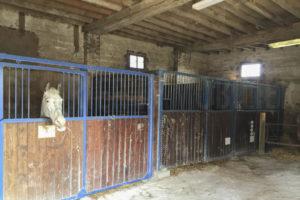Boxes chevaux de la ferme équestre à vendre dans l'Yonne