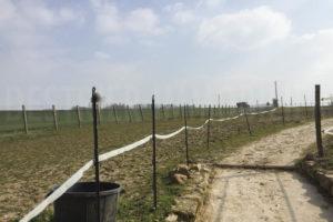 Paddocks de la ferme équestre à vendre dans l'Yonne