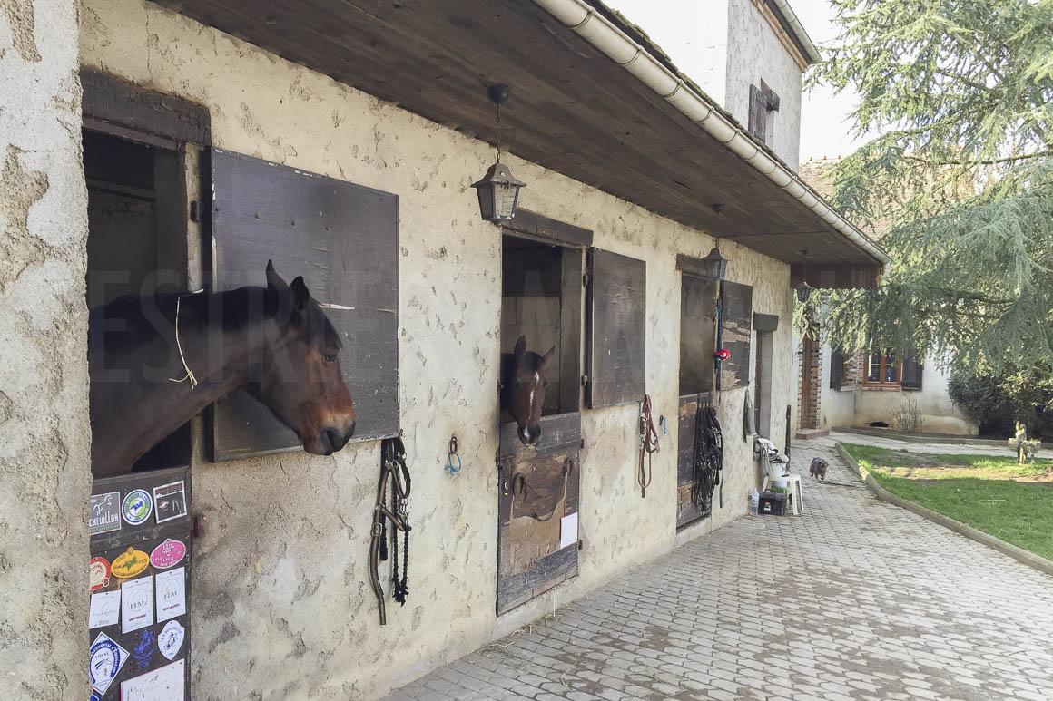 centre equestre a vendre loiret