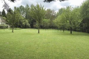 Terrain, pelouse du domaine à vendre proche Paris