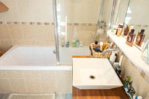 Salle de bains de la propriété équestre à vendre seine-et-marne