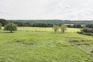 Terrain et la vallée