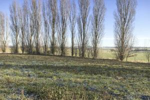 Le terrain du corps de ferme à vendre en seine-et-marne