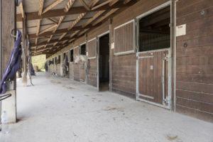 Boxes à chevaux de la propriété à vendre en Seine-et-Marne