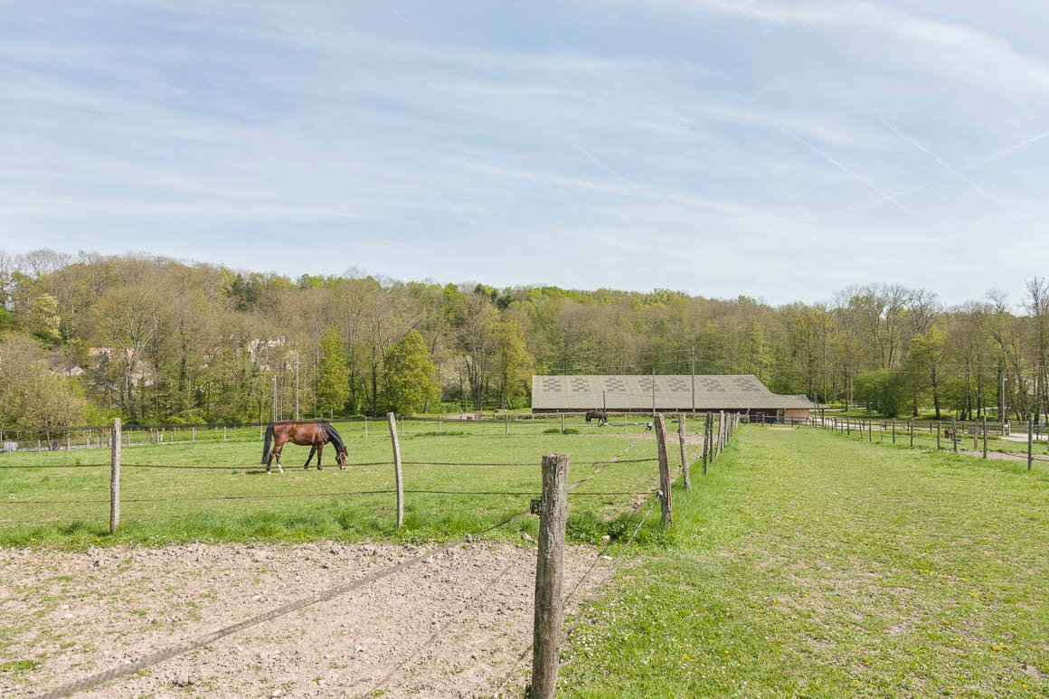 Domaine équestre remarquable 6 hectares