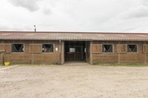 Barns pour chevaux de la propriété équestre à vendre
