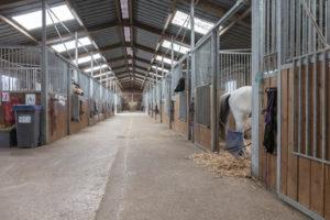 Intérieur barns pour chevaux