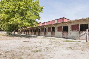 Écurie chevaux propriété équestre à vendre