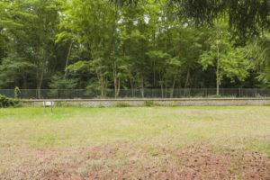 Parc et forêt de la propriété à vendre à Fontainebleau