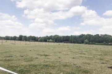 Ferme équestre 12 hectares