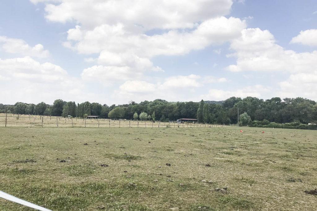 Ferme équestre 80 ares et 12 hectares en location