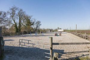 Carrière pour chevaux, propriété équestre à vendre