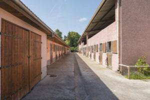 Écurie chevaux installation équestre