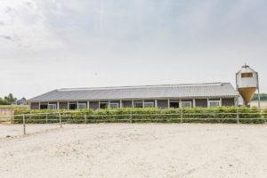 Carrière chevaux et barns
