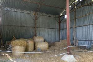 Hangar paiile et foin de la ferme à vendre