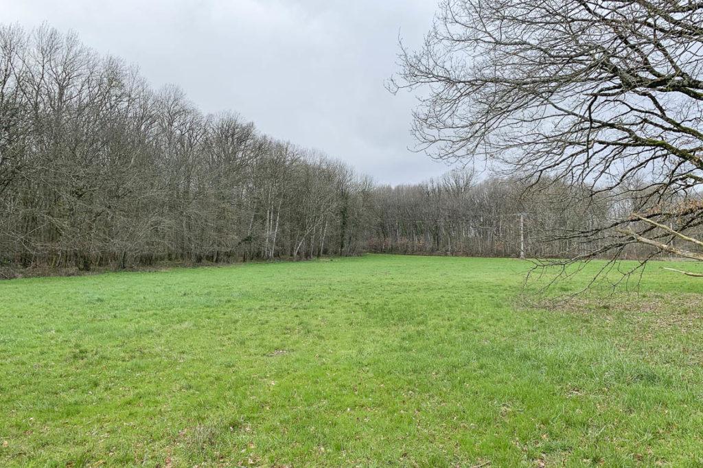 Terrain constructible et agricole de 20 672 m²