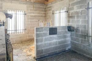 Boxes chevaux propriété à vendre 77