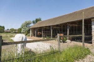 Abris chevaux paddock corps de ferme à vendre