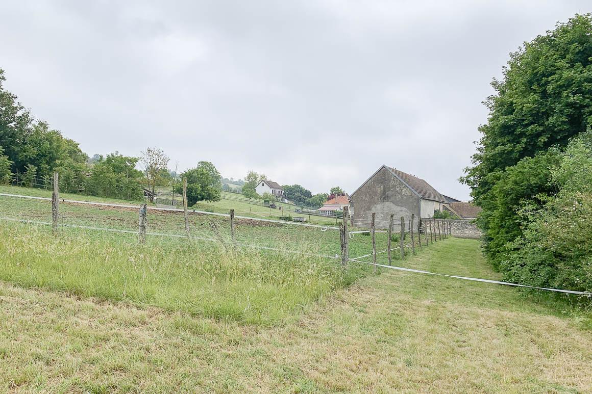 Paddock de la propriété équestre à vendre dans l'Yonne