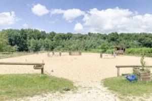 Carrière chevaux