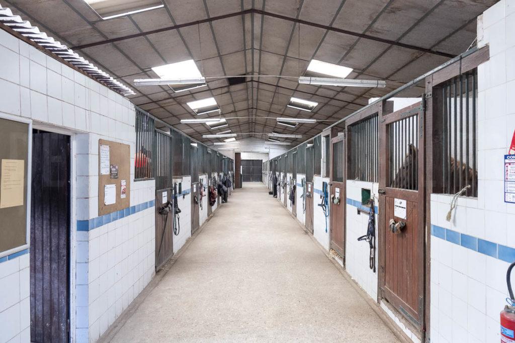 Centre équestre avec logements proche Fontainebleau