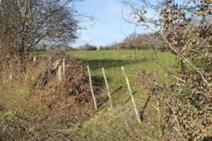 Terrain agricole à vendre Orne (61)