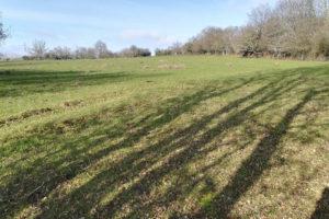 Terrain agricole vente