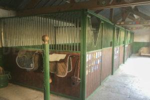 Boxes poney club à vendre