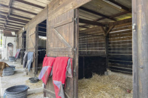 Boxes chevaux propriété à vendre
