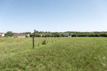 Exploitation agricole sur 237 hectares environ