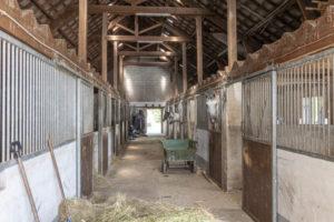 Boxes chevaux immobilier équestre à vendre