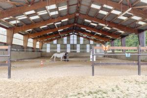 Manège chevaux propriété équestre