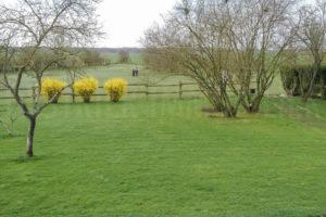Le parc et paddocks chevaux