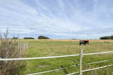 Propriété sur 5 hectares, deux maisons, installations équestres